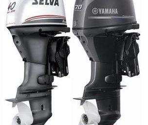 Motor - Murena 70